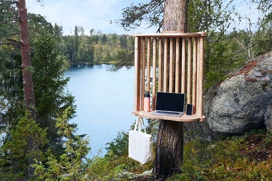How about your next meeting in the woods?