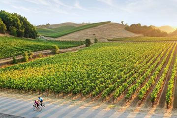 sonoma-meeting-planner-guide-1 -min
