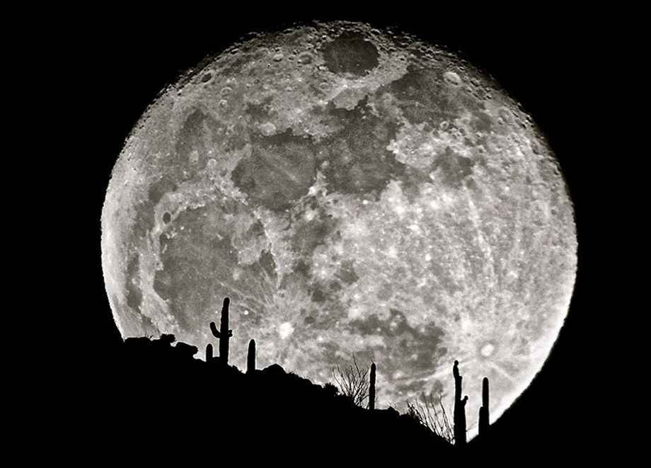 Moonrise over the desert, courtesy of Arizona Sky Tours