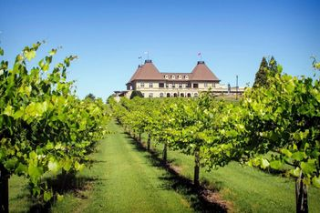 Grapes and Groups: 5 U.S. Winery Hotels