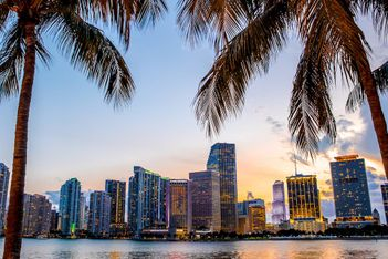Miami Skyline STR Hotel Performance