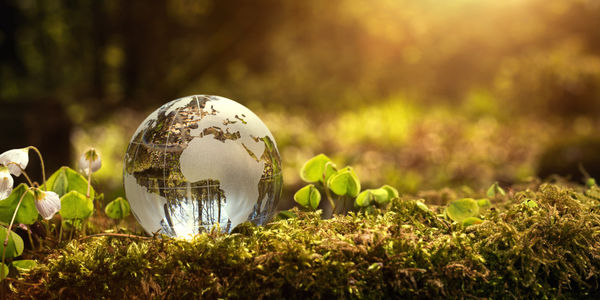 Sounding Off: No matter the state of travel, sustainability must be a priority