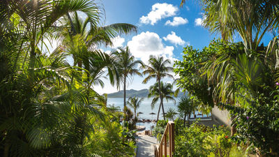 What's New in St. Barts, Including COVID-19 Travel Guidelines