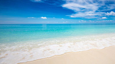 Bahamas Paradise Cruise Line Plans a July Return to Cruising from the U.S.