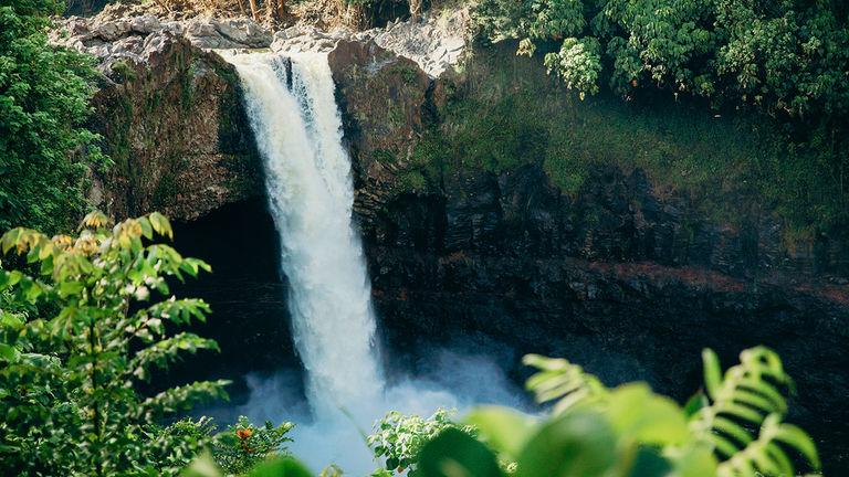 Hawaii Vax _PHOTO1
