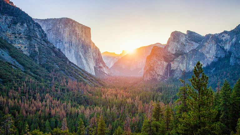 National parks, such as Yosemite, will see increased interest.