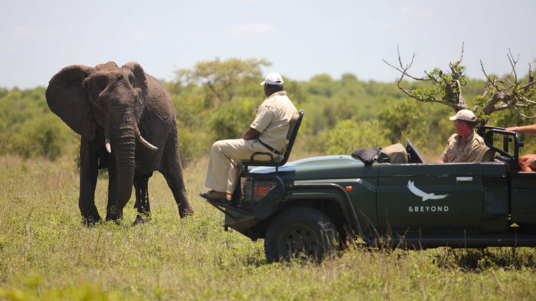 AndBeyond is dedicated to wildlife preservation.