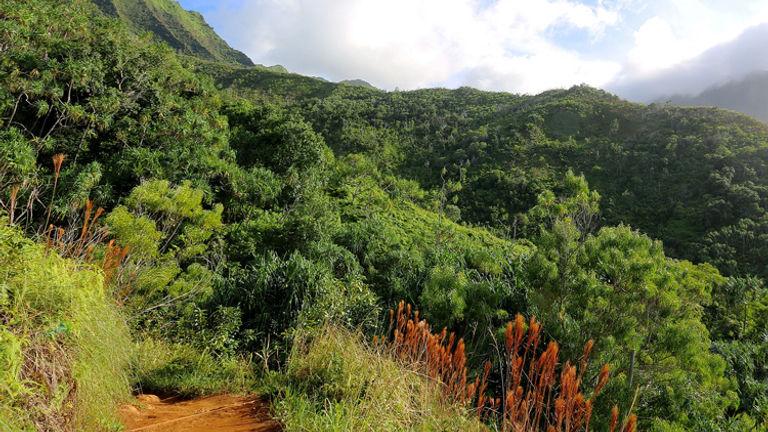 Kalalau Trail_PT 2