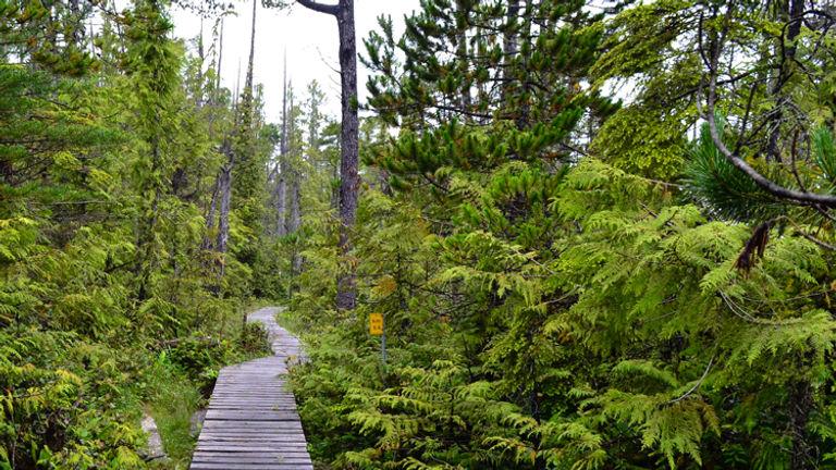 West Coast Trail_PT 9