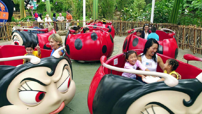 Perfect Theme Park for Clients