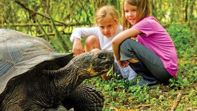 Regenerative Travel Opportunities for Families
