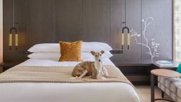 IHG injects fun and vitality into new lifestyle hotel brands