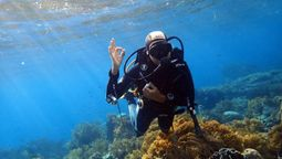 Taking the plunge into dive tourism