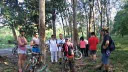 Bonding over rubber trees and monkeys in Malaysia
