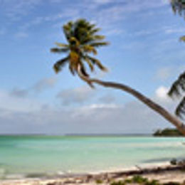 Lindblad Expeditions Oceania & South Pacific Cruises