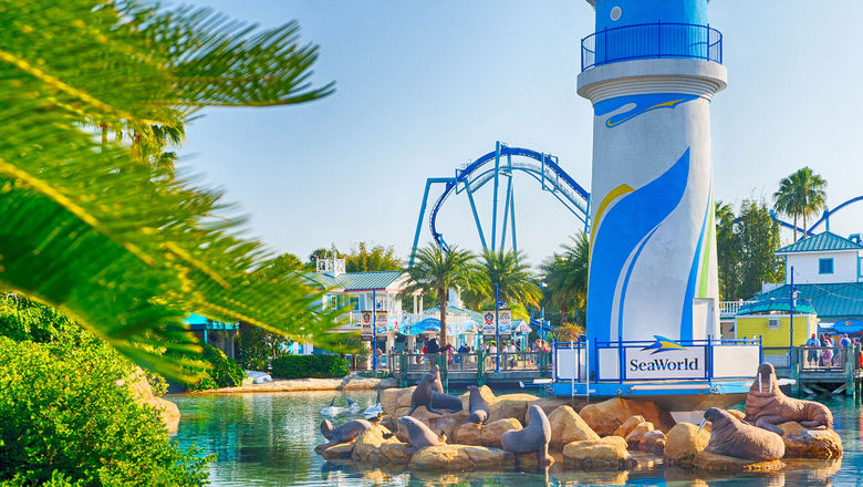 SeaWorld's interim CEO seeks to put guests' minds at ease