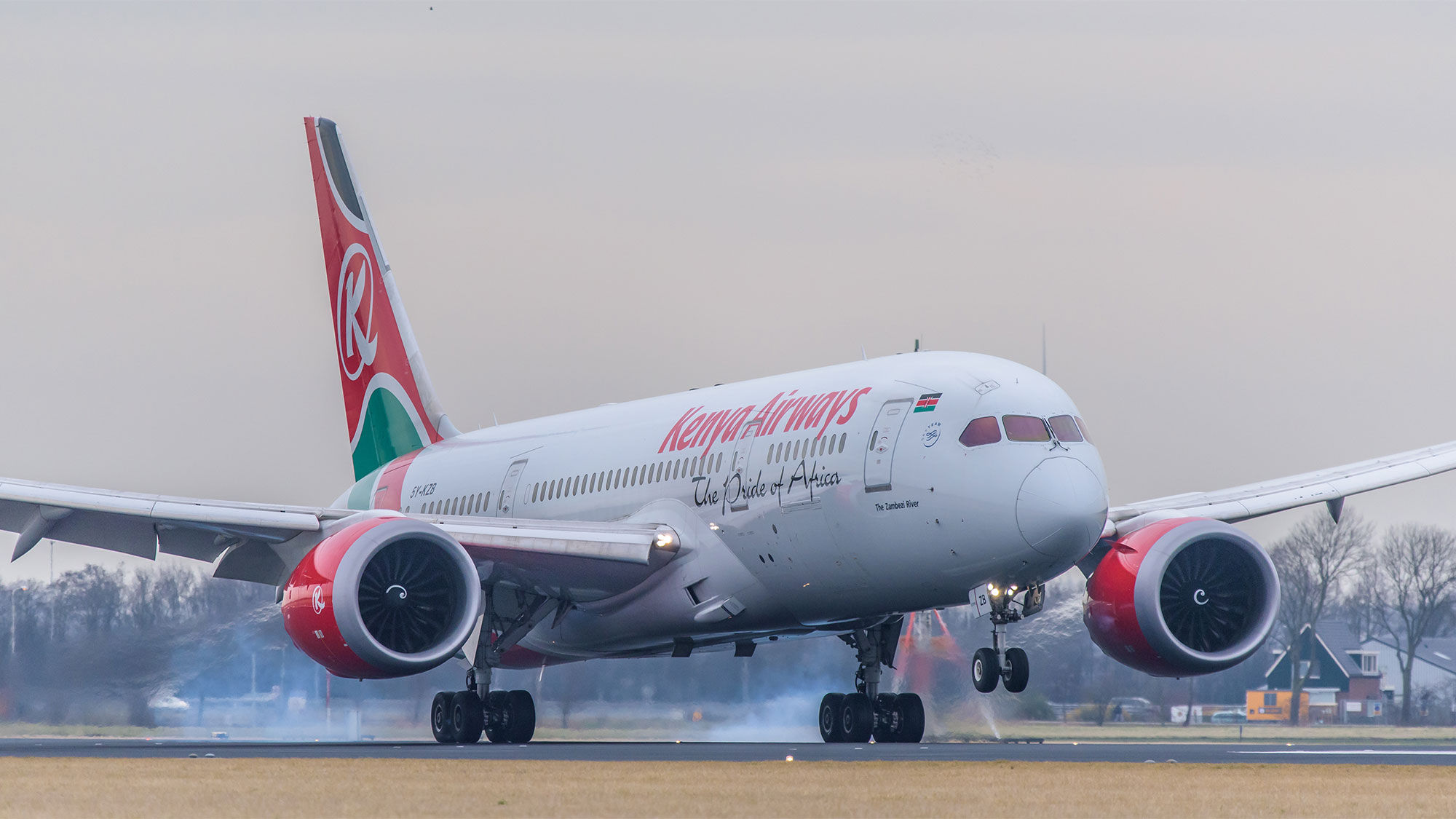 Kenya Airways 787 [Credit: Nieuwland Photography/Shutterstock.com]