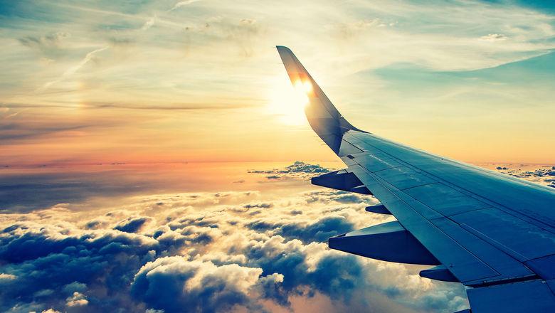 Airplane wing [Credit: BABAROGA/Shutterstock.com]