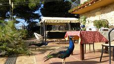 Villa San Marco Agrigento