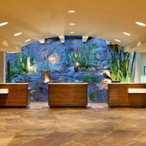 Marriott Phoenix Resort Tempe at The Buttes