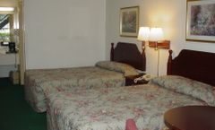 Palms Inn & Suites