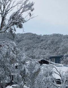 Attunga Alpine Lodge