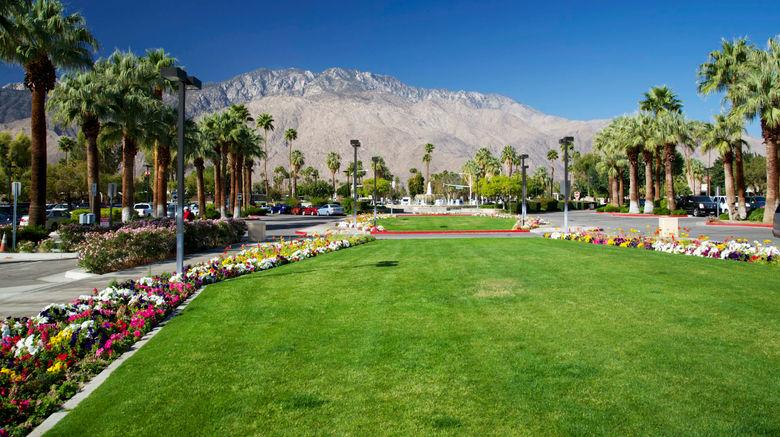 <b>Palm Springs Scenery</b>