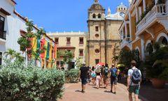 Selina Cartagena