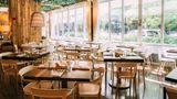 Chicago Athletic Association Hotel Restaurant