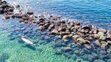 Costa Sur Resort & Spa Other