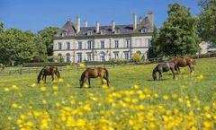 Chateau d'Ygrande