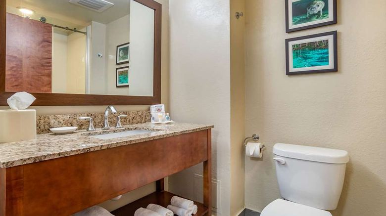 """Comfort Suites TALLAHASSEE DOWNTOWN Room. Images powered by <a href=""""http://web.iceportal.com"""" target=""""_blank"""" rel=""""noopener"""">Ice Portal</a>."""