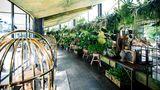 Apollo Hotel Amsterdam,Tribute Portfolio Other