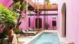 Hotel Rosas & Xocolate Pool