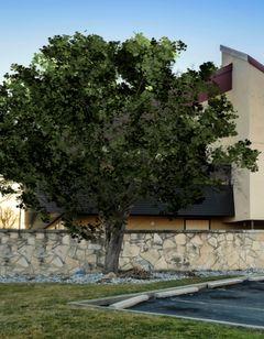 Red Roof Inn Lansing East - MSU