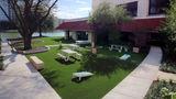 Omni Las Colinas Hotel Pool