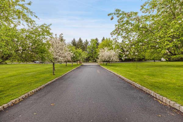 FLOWERING TREE LINED DRIVEWAY