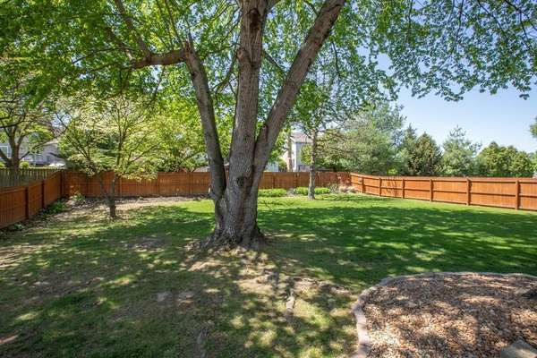 Newer 6 Foot Privacy Fence